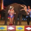Frisco Family & Performing Elephants