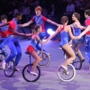 Sailor Circus 2014 Spring Shows